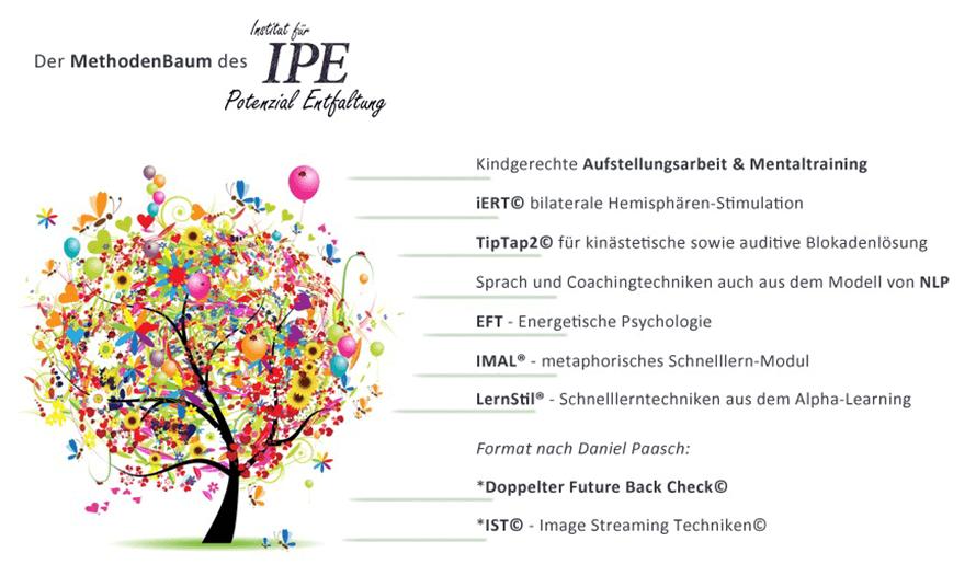 Der IPE Methodenbaum